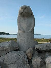 Canadian Groundhog